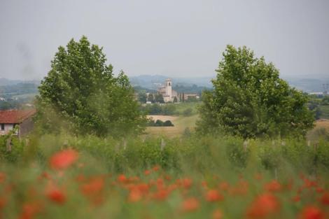 millemiglia_Land.1