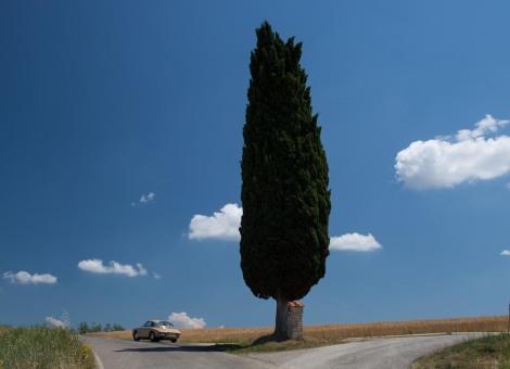 millemiglia_Toskana.21